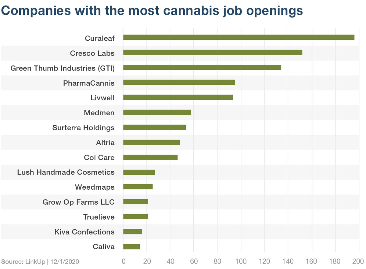 Cannabis jobs by company
